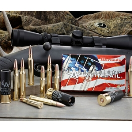 MUNICION HORNADY C/30-06 SP AMERICAN WHITETAIL 180 GR